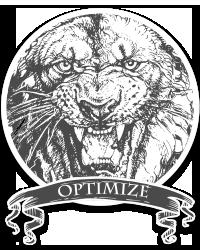Optimize your website badge