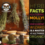 Test Your Herb Knowledge With MIND Herbalist and Content Wiz Molly Sams!