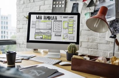 why wordpress - customization